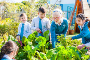 Our Lady of the Assumption Catholic Primary School Strathfield Gardening